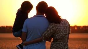 Gelukkige familie die op de zonsondergang letten, die zich op een tarwegebied bevinden Een mens die een kind in zijn wapens houde stock video