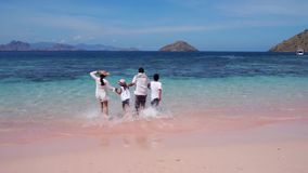 Gelukkige familie die op Roze Strand lopen stock video