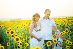 Gelukkige familie die pret hebben in openlucht stock afbeelding