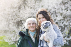 Gelukkige familie met een hond in een de lentepark Royalty-vrije Stock Afbeeldingen