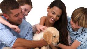 Gelukkige familie met hun puppy op witte achtergrond stock videobeelden