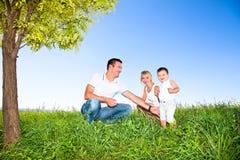 Gelukkige familie op picknick in park Royalty-vrije Stock Foto's