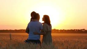 Gelukkige familie: vader, moeder en kind die op de zonsondergang letten, die zich op een tarwegebied bevinden De vader houdt zijn stock video