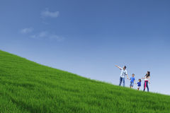 Gelukkige familiegang op groene gebied en greephanden Stock Fotografie