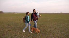 Gelukkige familiereizen met een hond op het gebied met rugzakken Papa, baby, dochter en huisdierenhond, toeristen het gezamenlijk stock videobeelden