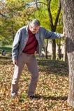 Gelukkige gedronken mens die op een boom leunen stock foto's