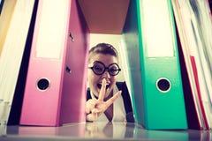 Gelukkige gekke accountant met stapels van bindmiddelen Stock Fotografie