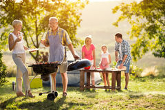 Gelukkige generatiefamilie die een barbecuepartij hebben Stock Foto