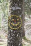 Gelukkige glimlach op een boomboomstam Royalty-vrije Stock Afbeeldingen