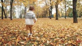 Gelukkige grappig leuk weinig jongen die over gevallen bladeren lopen door de verbazende de herfststeeg in park langzame mo stock footage