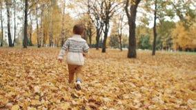 Gelukkige grappig leuk weinig jongen die over gevallen bladeren lopen door de verbazende de herfststeeg in park langzame mo stock videobeelden