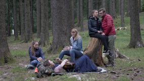 Gelukkige groep vrienden die in het hout kamperen die aard het spelen van gitaar genieten en het zingen van samen liggend het gra stock footage