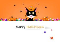 Gelukkige Halloween-kaart, kat en zoet suikergoed met leuke pompoen, het seizoen van de vieringsvakantie, de affiche van de het b stock illustratie