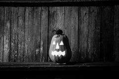 Gelukkige Halloween-pompoenachtergrond Stock Foto's