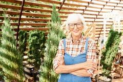 Gelukkige Hogere Landbouwer in Zonlicht royalty-vrije stock foto