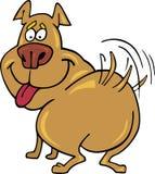 Gelukkige hond Royalty-vrije Stock Afbeelding
