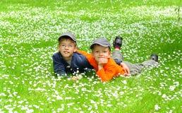 Gelukkige jonge broers Stock Afbeeldingen