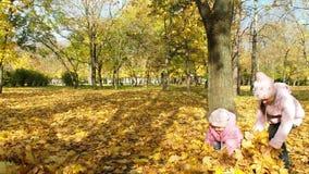 Gelukkige jonge geitjes die met de herfstbladeren spelen stock footage
