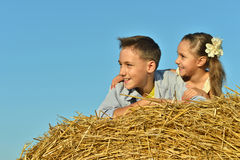 Gelukkige jonge geitjes op gebied bij de zomer Royalty-vrije Stock Fotografie