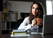 Gelukkige Jonge Mooie Vrouw die Laptop met behulp van, binnen royalty-vrije stock foto