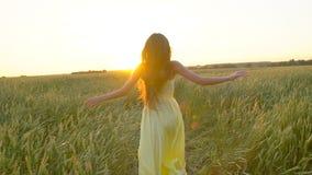 Gelukkige jonge mooie vrouw in gele kleding die op tarwegebied lopen in de zonsondergangzomer, het gelukconcept van de Vrijheidsg stock videobeelden