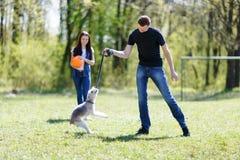 Gelukkige jonge paar en hond stock fotografie