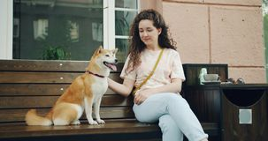 Gelukkige jonge vrouw die leuke het puppyzitting van shibainu op bank in openlucht in koffie petting stock video
