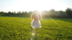 Gelukkige jonge vrouw die op weide op een zonnige dag lopen stock videobeelden