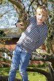 Gelukkige jongen Stock Foto's