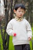 Gelukkige jongen Stock Fotografie