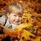 Gelukkige jongen in bladeren van de herfst stock foto's
