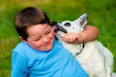 Gelukkige jongen die door zijn huisdier worden gelikt royalty-vrije stock fotografie