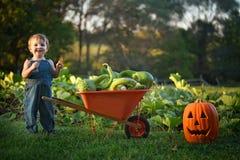 Gelukkige Jongen met kruiwagen van pompoenen stock foto