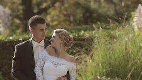 Gelukkige jonggehuwden in een park stock video