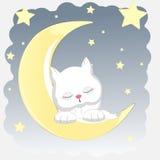 Gelukkige kat die slaap op de maan Royalty-vrije Illustratie