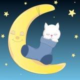 Gelukkige kat die slaap op de maan in sok Stock Illustratie