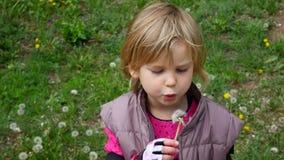 Gelukkige kind blazende paardebloemen Meisje met pluizige paardebloem stock footage