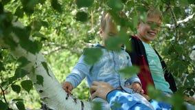 Gelukkige kinderen die op de tak van een berk slingeren stock video
