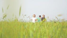 Gelukkige kinderen die op het de zomergebied lopen stock videobeelden