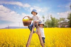 Gelukkige kleine jongens, die op een houten ladder in gele verkrachting zitten fie stock afbeelding