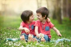 Gelukkige kleine kinderen, die in het gras liggen, blootvoets, madeliefjesaro Royalty-vrije Stock Afbeelding