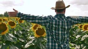 Gelukkige landbouwer die de zonnebloemaanplanting tonen stock videobeelden