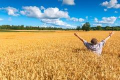 Gelukkige landbouwer onder een gebied van rijpende rogge stock afbeeldingen