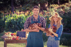 Gelukkige landbouwers die zich bij hun box bevinden en kip houden royalty-vrije stock foto's