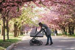 Gelukkige mammagang met haar weinig babymeisje in wandelwagen Achtergrond van roze sakuraboom stock foto's