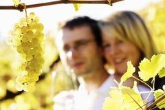 Gelukkige man en vrouw in wijngaard. Royalty-vrije Stock Fotografie