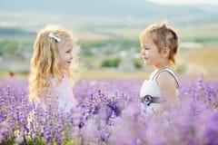 Gelukkige meisjes op gebied royalty-vrije stock fotografie