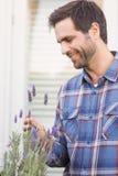 Gelukkige mens die zijn lavendelinstallatie ruiken royalty-vrije stock afbeelding