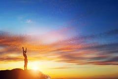 Gelukkige mens met handen omhoog op piek van de berg stock fotografie