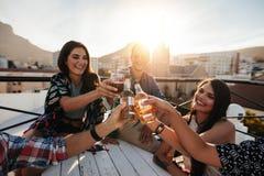 Gelukkige mensen die met dranken vieren royalty-vrije stock foto